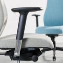 Direktorski stol Viden